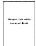 Thông tin về các website thương mại điện tử
