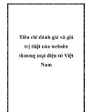 Tiêu chí đánh giá và giá trị thật của website thương mại điện tử Việt Nam