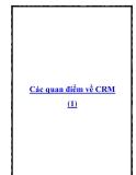 Các quan điểm về CRM (1)
