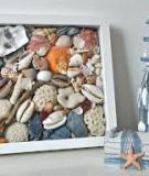 Đi biển nhặt vỏ sò làm khung ảnh mùa hè