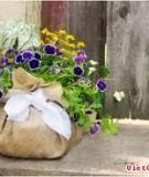 Giỏ hoa mộc mạc tặng mẹ nhân Mother's Day