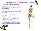 Cấp cứu các trường hợp gãy xương ở trên biển