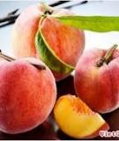 Công dụng dưỡng da đẹp hiệu quả từ trái đào