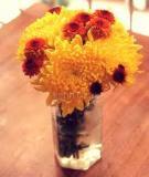 """""""Bí kíp"""" cắm hoa siêu dễ cho teen vụng về"""