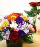 Tuyệt chiêu cắm hoa tròn dễ dàng
