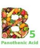 Những loại vitamine B có lợi cho sức khỏe và sắc đẹp