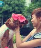 Diện váy tiểu thư cho cún xinh