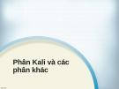 Phân Kali và các phân khác