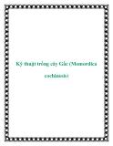 Kỹ thuật trồng cây Gấc (Momordica cochinesis)