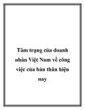 Tâm trạng của doanh nhân Việt Nam về công việc của bản thân hiện nay