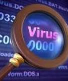 """""""Làm sạch"""" máy tính nhiễm virus"""