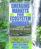Opportunities And Challenges Of Investing In Emerging Markets: A Case Study Of Panama