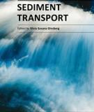 SEDIMENT TRANSPORT - Silvia Susana Ginsberg