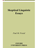 Skeptical Linguistic Essays