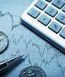 Investing in Treasury Inflation  Protected Securities