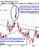 Investor Sentiment in the Stock Market