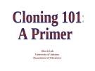 Cloning 101: A Primer