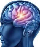 Kích thích não bộ nâng cao khả năng Toán học