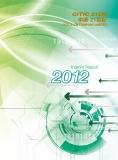 INTERIM REPORT 2012