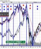 Crude Oil and Stock Markets:  Stability, Instability, and Bubbles