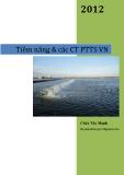 Tiềm năng & các CT PTTS VN