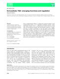 báo cáo khoa hoc : Extracellular TG2: emerging functions and regulation