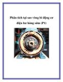 Phân tích tại sao vòng bi động cơ điện hư hỏng sớm (P1).Kinh nghiệm đã cho