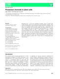 Báo cáo khoa hoc : Potassium channels in plant cells