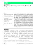 Báo cáo khoa hoc : Cytochrome c biogenesis in mitochondria – Systems III and V