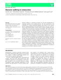 Báo cáo khoa hoc : Genome walking in eukaryotes