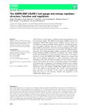Báo cáo khoa hoc :The AMPK⁄SNF1⁄SnRK1 fuel gauge and energy regulator: structure, function and regulation