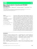 Báo cáo khoa hoc : Role of HoxE subunit in Synechocystis PCC6803 hydrogenase