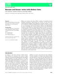 Báo cáo khoa hoc : Barnase and binase: twins with distinct fates