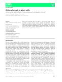 Báo cáo khoa hoc : Anion channels in plant cells
