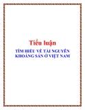 Tiểu luận : Tìm hiểu về tài nguyên khoáng sản ở Việt Nam