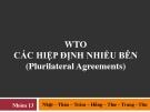 WTO CÁC HIỆP ĐỊNH NHIỀU BÊN