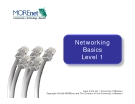 Networking Basics Level 1