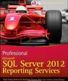 PROFESSIONAL MICROSOFT® SQL SERVER® 2012 REPORTING SERVICES