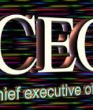 Hành trang gì để CEO khởi sự doanh nghiệp?