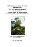 Kỹ Thuật trồng cây Cáng lò (Xoan đào) (Betula alnoides) bằng phương pháp bứng cây