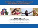 Societal Burden of Child Maltreatment and  Public Health's Role in Prevention