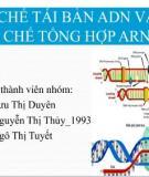 CƠ CHẾ TÁI BẢN ADN VÀ CƠ CHẾ TỔNG HỢP ARN