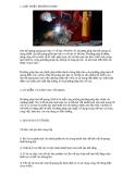 Giới thiệu phương pháp hàn hồ quang que hàn có vỏ bọc