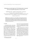 """Báo cáo """"  Ảnh hưởng của kích thước hạt TiO2 đến tính chất và hoạt độ xúc tác trong phản ứng quang oxy hóa p-xylen """""""