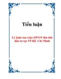 Tiểu luận: Lý luận ma trận SWOT thu hút đầu tư tại TP.Hồ Chí Minh