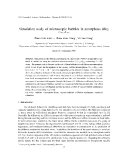 "Báo cáo ""Simulation study of microscopic bubbles in amorphous alloy $Co_{81.5}B_{18.5}$"""