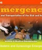Obstetrics and Gynecological  Emergencies