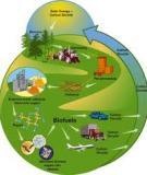 Nhiên liệu chế tạo từ rác thải