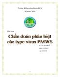 Tiểu luận:Chuẩn đoán phân biệt các tybe virus PMWS