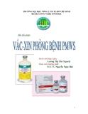 Tiểu luận:Vắc-xin Phòng Bệnh PMWS